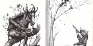 Recensione: Il canto della foresta, di Ericailcane