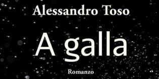 A galla, di Alessandro Toso